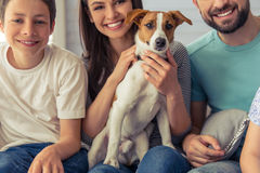 Family at home. Cropped image of beautiful young parents and their son looking at camera and smiling, sitting with their cute dog on sofa at home Royalty Free Stock Image