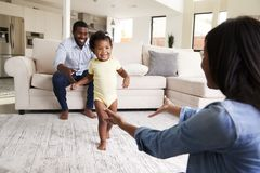 Family At Home Encouraging Baby Daughter To Take First Steps royalty free stock photography