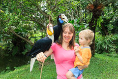 Family with hornbills Stock Image