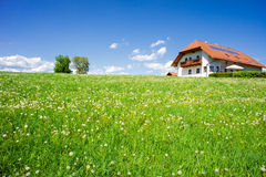 Family House in a Summer Landscape Stock Photography