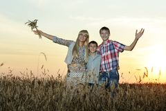 Family hugs in field in sunset Stock Image