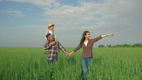 Family idyll, happy young couple with kid boy on shoulders walk in green field against sky