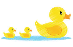 Family vector. Illustration of a family of yellow ducks + vector eps file Stock Photos