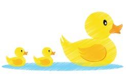Family vector. Illustration of a family of yellow ducks + vector eps file stock illustration