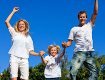 Free Family Jumping In The Air Royalty Free Stock Images - 9344329