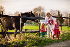Family with kids feeding horse Royalty Free Stock Images