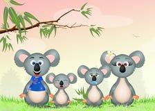 Family of koalas Stock Photography