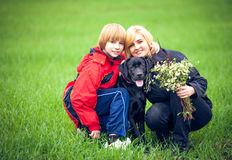 Family with Labrador is resting in the park Royalty Free Stock Images