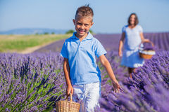 Family in lavender summer field Stock Photo