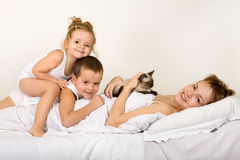 Family laying in bed with their little kitten Stock Photos