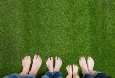 Family Legs Standing On Green Grass Stock Photography