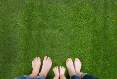 Family legs standing together on green grass Stock Image