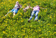 Family lies on the grass Royalty Free Stock Image