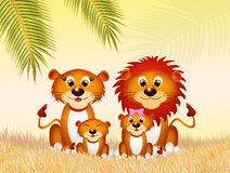 Family of lions in the savannah Royalty Free Stock Photo