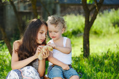 Family with little yellow duckling in summer Park Stock Images