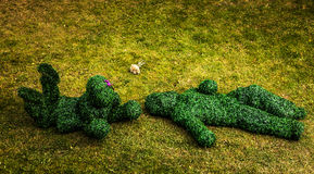 Family of live bushes. Outdoor fairy tale style photo. Royalty Free Stock Photos