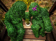 Family of live bushes. Outdoor fairy tale style photo. Stock Image