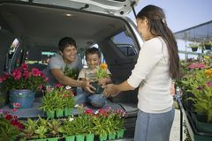 Family Loading Flowers into Minivan royalty free stock image