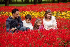 Family looking aside in flowering park Royalty Free Stock Photos