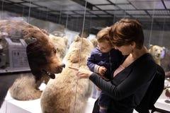 Family looking at bear Stock Photos