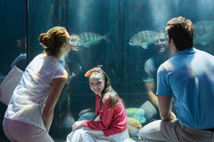 Family looking at fish tank Royalty Free Stock Photo
