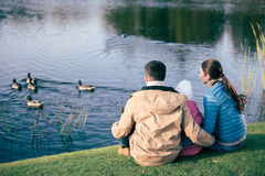Family looking at lake with ducks. Back view of young family sitting embracing on green grass and looking at lake with ducks royalty free stock photos