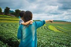 Family looking at tea plantation field Stock Photos