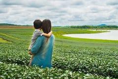 Family looking at tea plantation field Stock Image