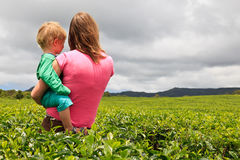 Family looking at tea plantation field Stock Photo