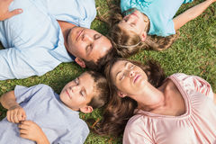 Family lying on the grass in a circle. With closed eyes in the park Stock Images