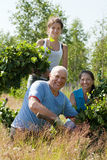 Family making birch branches Royalty Free Stock Photos