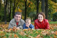 Family on maple leaves Royalty Free Stock Photography