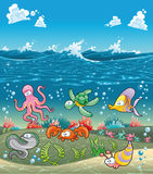 Family of marine animals under the sea. Funny cartoon and vector illustration Stock Photos