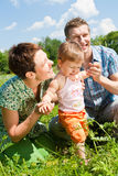Family in the meadow Royalty Free Stock Photography