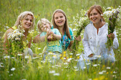 Family in meadow Stock Images
