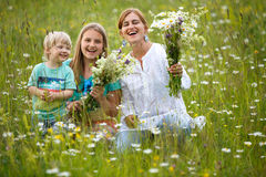 Family in meadow Stock Photos