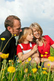 Family on meadow in spring Stock Images