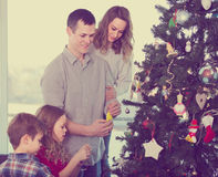 Family members preparing for Christmas. Together at home Royalty Free Stock Images