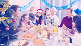 Family members saying toasts during dinner. Family members saying toasts in turn during Christmas dinner Royalty Free Stock Image