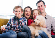 Family members spending quality time together. Cheerful family members spending quality time together at home stock images
