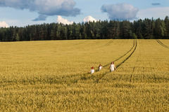 Family mom and two children girl and boy walking the wheat fields and forests. Family mom and two children girl and boy walking the yellow wheat fields and Royalty Free Stock Photos