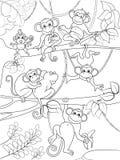 Family of monkeys on a tree coloring book for children cartoon vector illustration stock illustration