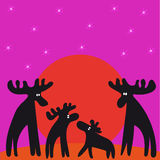 The family of moose at sunset looking at the stars Stock Photos