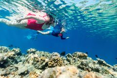 Family mother and kids snorkeling royalty free stock photos