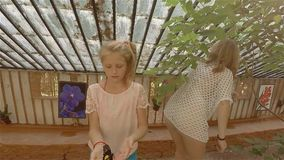 Family, mother and two daughters walking in garden butterflies in Crimea. HD stock video footage