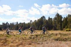 Family mountain biking in countryside, Big Bear, California Stock Photos