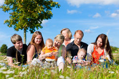 Family and multi-generation - fun on meadow in sum. Family and multi-generation - mother, father, children and grandmother having fun on meadow in summer Royalty Free Stock Images