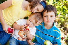 Family at the orchard. Family eating apples at the orchard Royalty Free Stock Photo