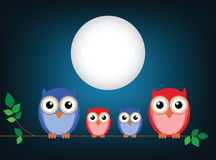 Family of owls Stock Images