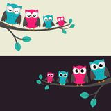 Family of owls Stock Photography